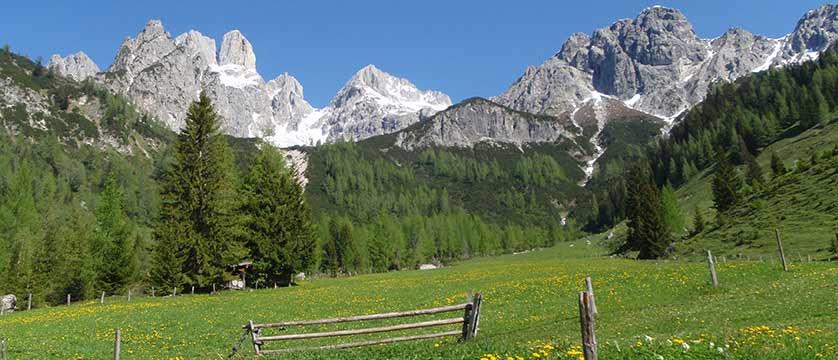 Filzmoos, Austria - Field & mountain view.jpg